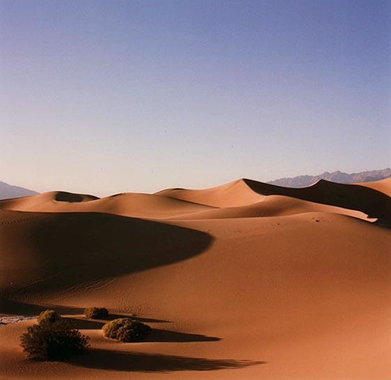 desertfloor21.jpg